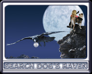 The SEARCH DOG'S RAVEN Poster Number 1