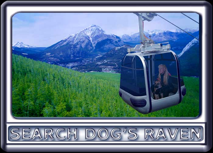 A young woman and her search dog ride a gondola in the mountains.  The dog is a Rhodesian ridgeback cross, with a black muzzle, dark ears and reddish tan fur.  Wearing a black search suit, with orange trim, the attractive handler has long blonde hair.