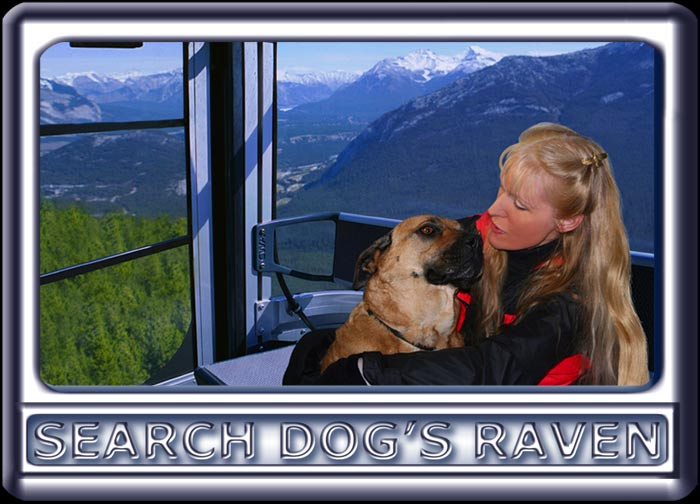 Making sure the dog is warm, a young woman and her search dog ride a gondola in the mountains.  The dog is a Rhodesian ridgeback cross, with a black muzzle, dark ears and reddish tan fur.  Wearing a black search suit, with orange trim, the attractive handler has long blonde hair.